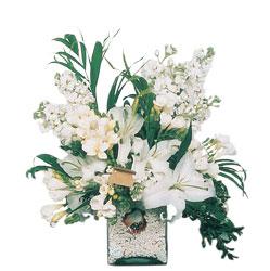 Bayburt internetten çiçek siparişi  sadece beyazlardan olusmus mevsim cam yada mika tanzim