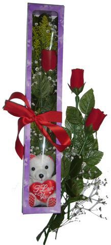 Bayburt internetten çiçek siparişi  3 adet canli gül ve oyuncak ayicik