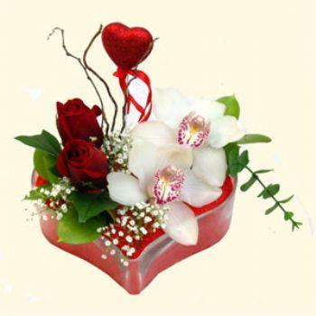 Bayburt hediye sevgilime hediye çiçek  1 kandil orkide 5 adet kirmizi gül mika kalp