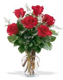 Bayburt çiçek gönderme sitemiz güvenlidir  7 adet kirmizi gül cam yada mika vazoda sevenlere