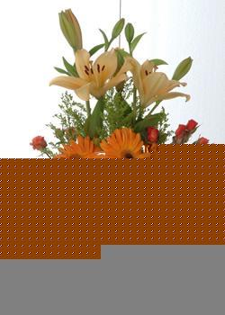Bayburt çiçek servisi , çiçekçi adresleri  cam yada mika vazo içinde karisik mevsim çiçekleri