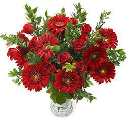 5 adet kirmizi gül 5 adet gerbera aranjmani  Bayburt hediye çiçek yolla