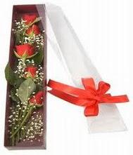 kutu içinde 5 adet kirmizi gül  Bayburt internetten çiçek siparişi