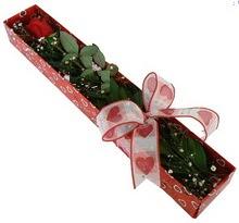 Tek kirmizi gül kutu içerisinde  Bayburt güvenli kaliteli hızlı çiçek