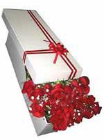 Bayburt çiçekçi telefonları  11 adet 1.kalite magnum güller