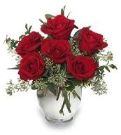 Vazo içerisinde 5 adet kırmızı gül  Bayburt çiçekçi mağazası