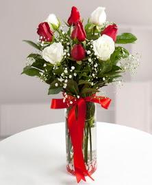5 kırmızı 4 beyaz gül vazoda  Bayburt cicekciler , cicek siparisi