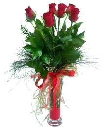 vazo içerisinde 5 kırmızı gül  Bayburt güvenli kaliteli hızlı çiçek