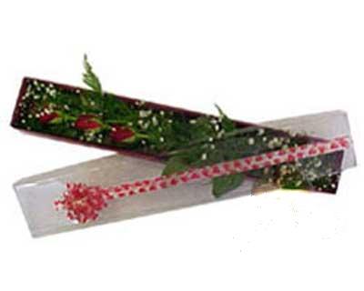 Bayburt hediye çiçek yolla  3 adet gül.kutu yaldizlidir.