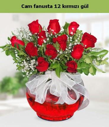 Cam içerisinde 12 adet kırmızı gül  Bayburt internetten çiçek satışı