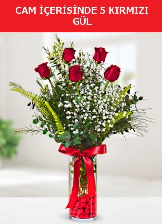 Cam içerisinde 5 adet kırmızı gül  Bayburt çiçek siparişi sitesi
