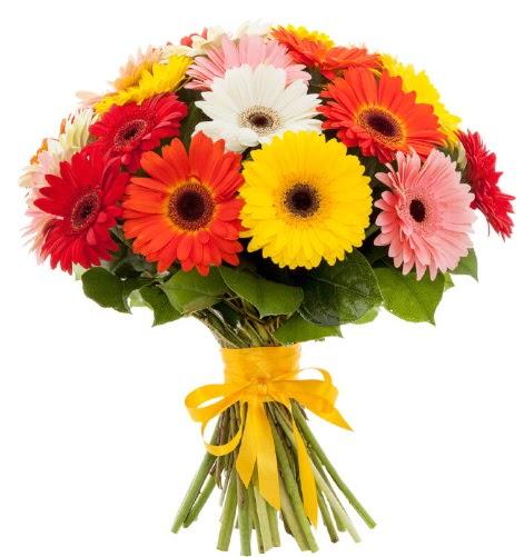 Gerbera demeti buketi  Bayburt çiçek satışı