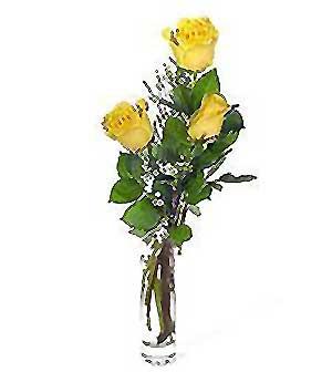 Bayburt internetten çiçek siparişi  3 adet kalite cam yada mika vazo gül