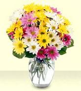 Bayburt internetten çiçek siparişi  mevsim çiçekleri mika yada cam vazo