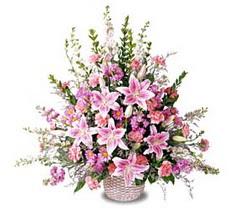 Bayburt çiçek siparişi sitesi  Tanzim mevsim çiçeklerinden çiçek modeli