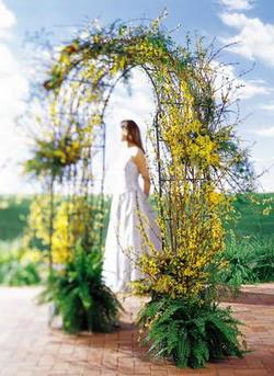 Bayburt internetten çiçek satışı  güller ve mevsim çiçegi