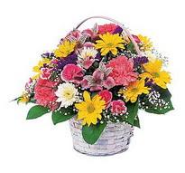 Bayburt çiçek , çiçekçi , çiçekçilik  mevsim çiçekleri sepeti özel