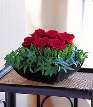Bayburt çiçek siparişi sitesi  10 adet kare mika yada cam vazoda gül tanzim