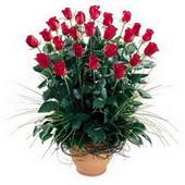 Bayburt uluslararası çiçek gönderme  10 adet kirmizi gül cam yada mika vazo