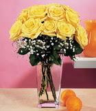 Bayburt internetten çiçek satışı  9 adet sari güllerden cam yada mika vazo