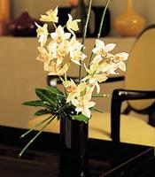 Bayburt çiçekçiler  cam yada mika vazo içerisinde dal orkide