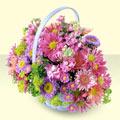Bayburt yurtiçi ve yurtdışı çiçek siparişi  bir sepet dolusu kir çiçegi  Bayburt çiçek gönderme sitemiz güvenlidir