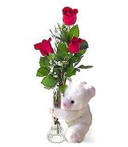 oyuncak ve 3 adet gül  Bayburt çiçek siparişi sitesi