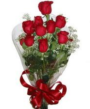 9 adet kaliteli kirmizi gül   Bayburt online çiçekçi , çiçek siparişi