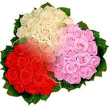 3 renkte gül seven sever   Bayburt çiçek , çiçekçi , çiçekçilik