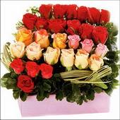 15 adet renkli gül ve cam   Bayburt çiçekçi mağazası