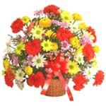 karisik renkli çiçek sepet   Bayburt çiçek gönderme sitemiz güvenlidir