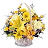 sadece sari çiçek sepeti   Bayburt çiçek gönderme sitemiz güvenlidir