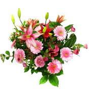 lilyum ve gerbera çiçekleri - çiçek seçimi -  Bayburt çiçek gönderme