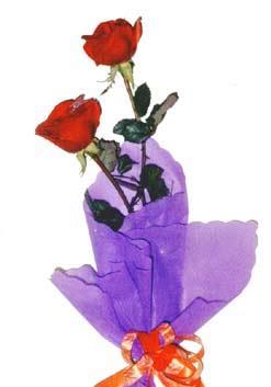 2  adet kirmizi gül buketi   Bayburt çiçek , çiçekçi , çiçekçilik