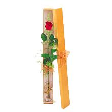 ince  kutuda  1  gül   Bayburt çiçek yolla