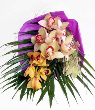 Bayburt cicekciler , cicek siparisi  1 adet dal orkide buket halinde sunulmakta