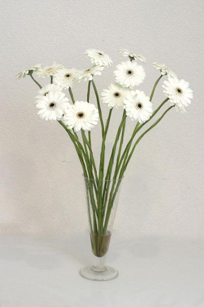 Bayburt çiçek mağazası , çiçekçi adresleri  cam vazo içerisinde 17 adet sade gerbera