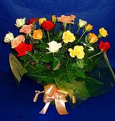 Bayburt hediye çiçek yolla  13 adet karisik renkli güller