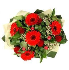 Bayburt ucuz çiçek gönder   5 adet kirmizi gül 5 adet gerbera demeti