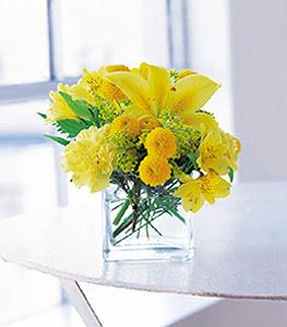 Bayburt ucuz çiçek gönder  sarinin sihri cam içinde görsel sade çiçekler