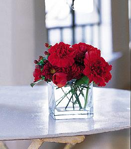 Bayburt ucuz çiçek gönder  kirmizinin sihri cam içinde görsel sade çiçekler