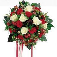 Bayburt ucuz çiçek gönder  6 adet kirmizi 6 adet beyaz ve kir çiçekleri buket
