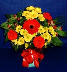 Bayburt ucuz çiçek gönder  sade hos orta boy karisik demet çiçek