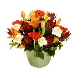 mevsim çiçeklerinden karma aranjman  Bayburt çiçek yolla , çiçek gönder , çiçekçi