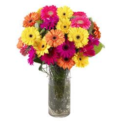 KARISIK GERBERALARDAN CAM VAZO TANZIMI  Bayburt güvenli kaliteli hızlı çiçek