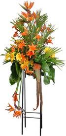 Bayburt çiçek siparişi sitesi  perförje tanzimi dügün nikah ve açilislara