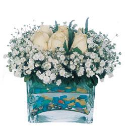 Bayburt çiçekçi mağazası  mika yada cam içerisinde 7 adet beyaz gül