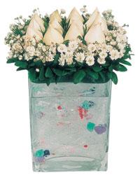 Bayburt çiçekçi mağazası  7 adet beyaz gül cam yada mika vazo tanzim