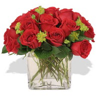 Bayburt çiçekçi telefonları  10 adet kirmizi gül ve cam yada mika vazo