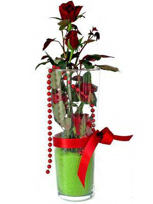 Bayburt online çiçek gönderme sipariş  Cam yada mika içerisinde 9 adet kirmizi gül - sevdiklerinize özel